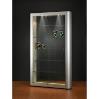 Designer Illuminated Glass Showcase - Glass Display cabinet with lighting - 1186x250x2000